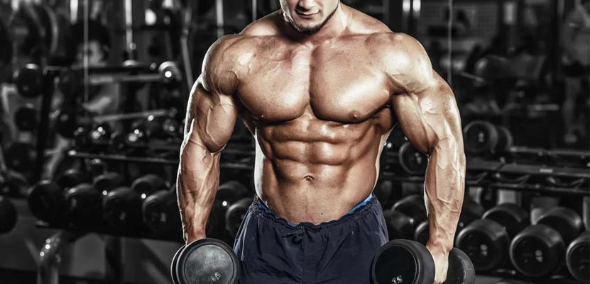 Mass Extreme - how does this supplement work?